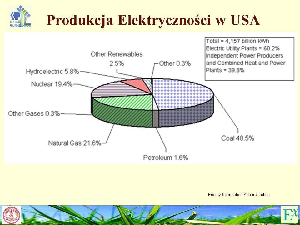 Produkcja Elektryczności w USA Energy Information Administration