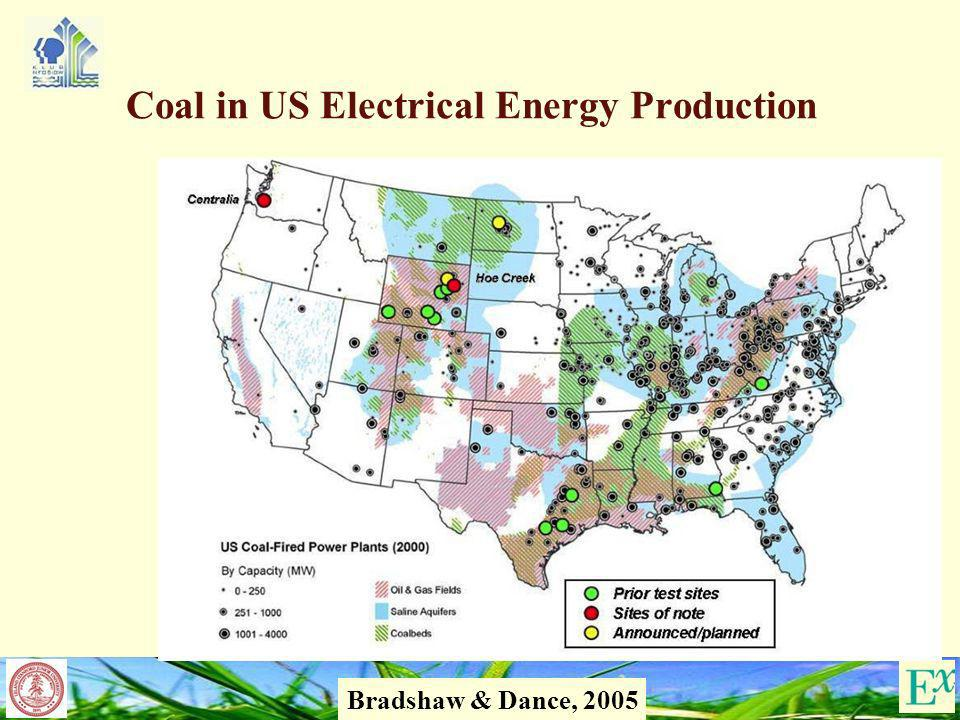 19 Coal in US Electrical Energy Production Bradshaw & Dance, 2005