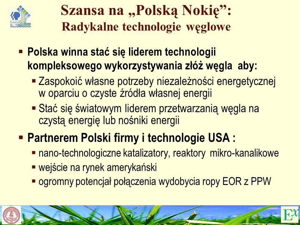 Szansa na Polską Nokię: Radykalne technologie węglowe Polska winna stać się liderem technologii kompleksowego wykorzystywania złóż węgla aby: Zaspokoi