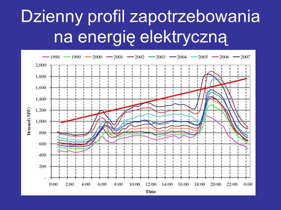 Dzienny profil zapotrzebowania na energię elektryczną