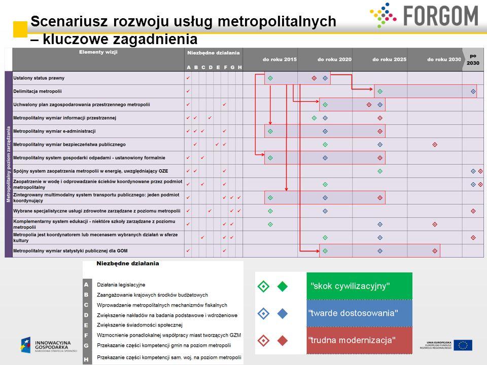 Scenariusz rozwoju usług metropolitalnych – kluczowe zagadnienia