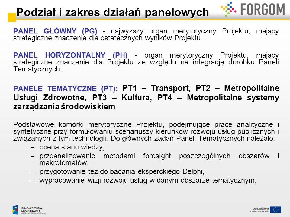 Spotkania panelowe PT i PH 12 serii spotkań paneli tematycznych i horyzontalnego wraz z pracą indywidualną ekspertów (ok.