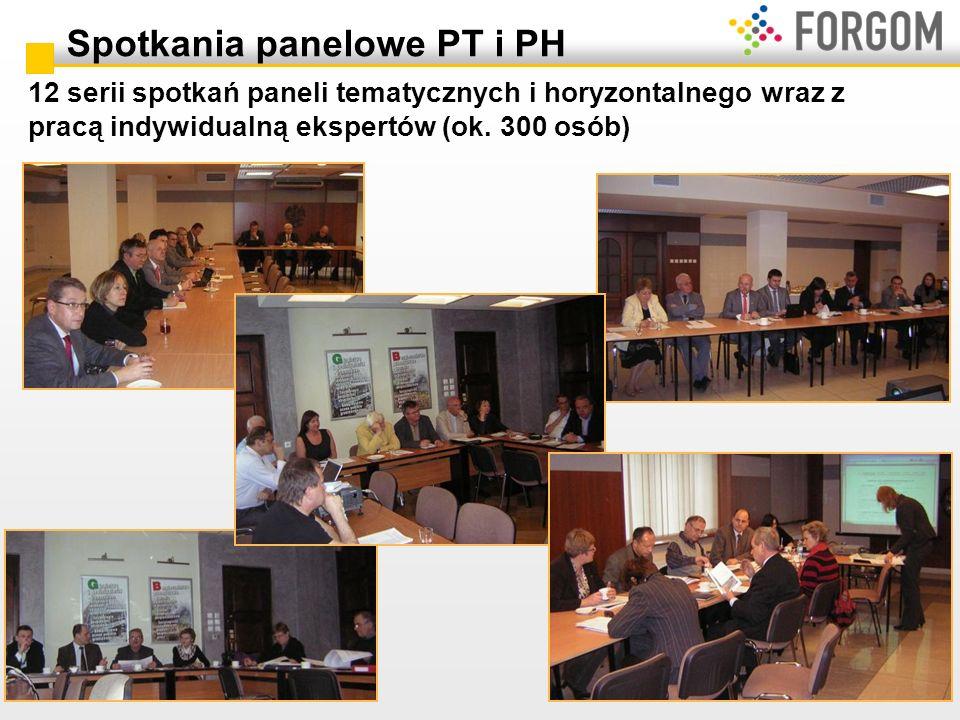 Spotkania panelowe PT i PH 12 serii spotkań paneli tematycznych i horyzontalnego wraz z pracą indywidualną ekspertów (ok. 300 osób)