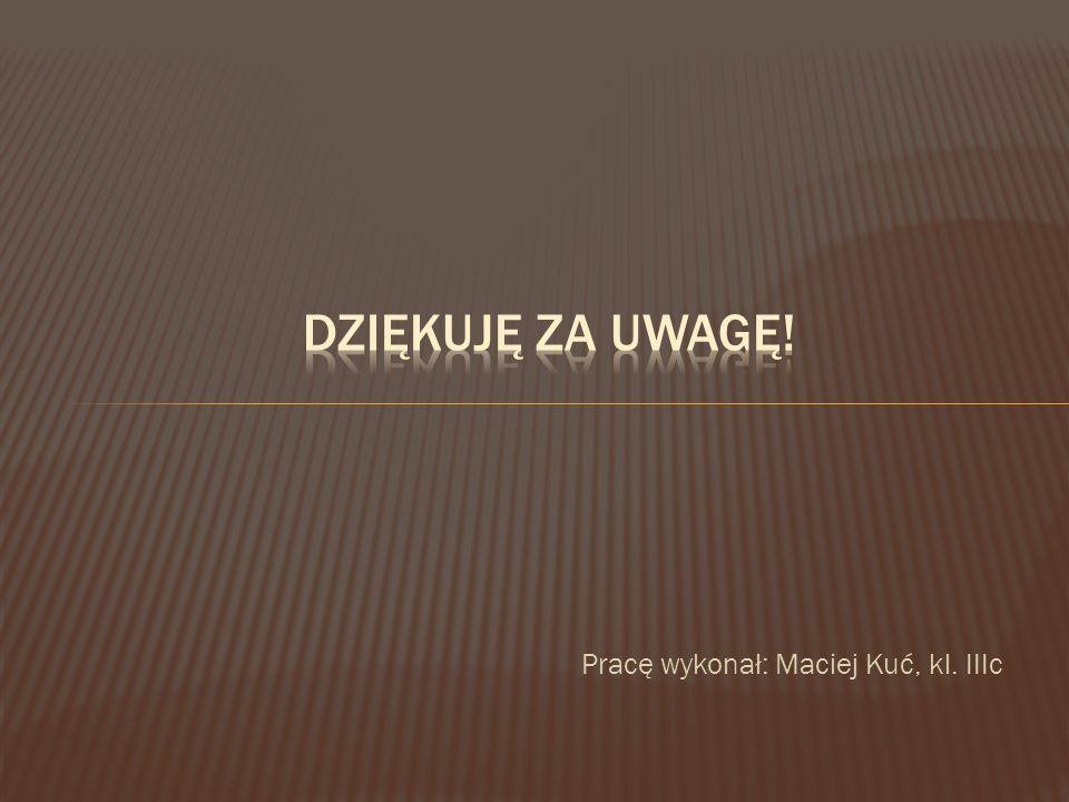 Pracę wykonał: Maciej Kuć, kl. IIIc