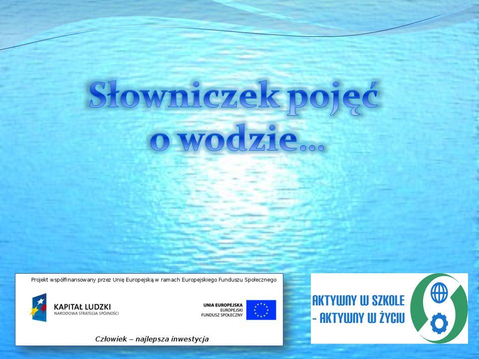 Wody zaskórne (prawidłowa nazwa: wody przypowierzchniowe) – wody podziemne, znajdujące się bardzo płytko pod powierzchnią ziemi.