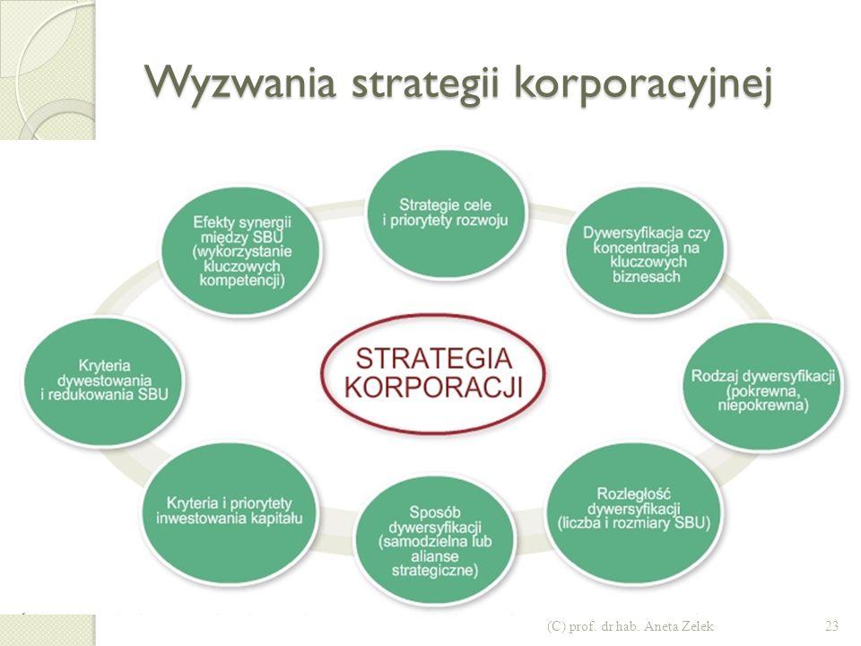 Poziomy strategii w firmach jedno- i wielobiznesowych (C) prof. dr hab. Aneta Zelek22