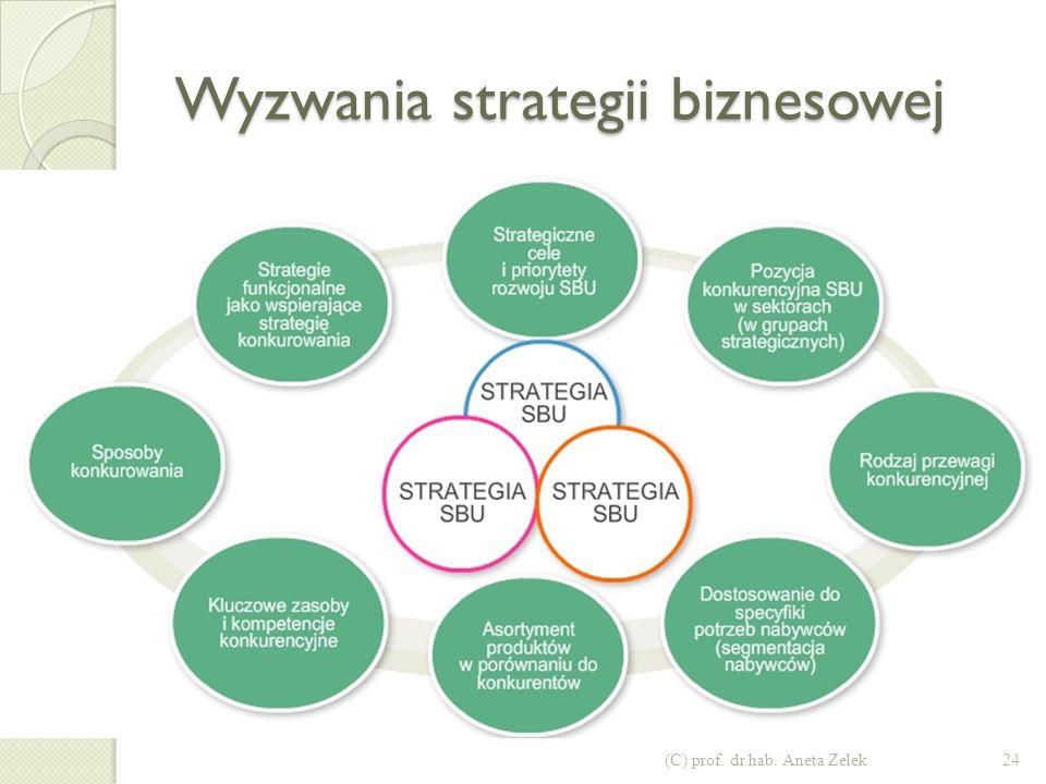Wyzwania strategii korporacyjnej (C) prof. dr hab. Aneta Zelek23
