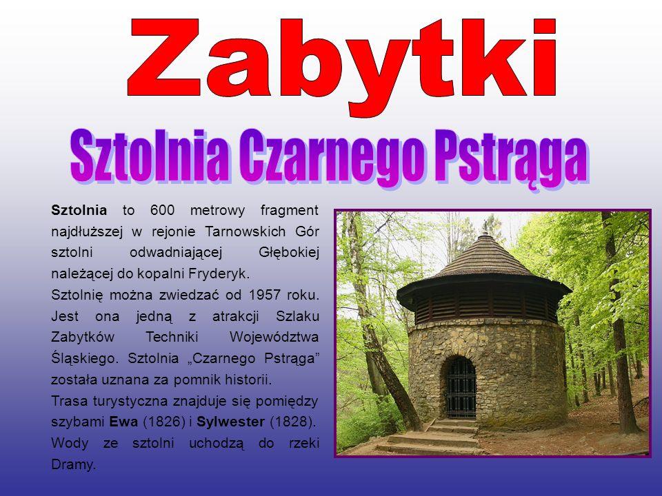 Sztolnia to 600 metrowy fragment najdłuższej w rejonie Tarnowskich Gór sztolni odwadniającej Głębokiej należącej do kopalni Fryderyk. Sztolnię można z