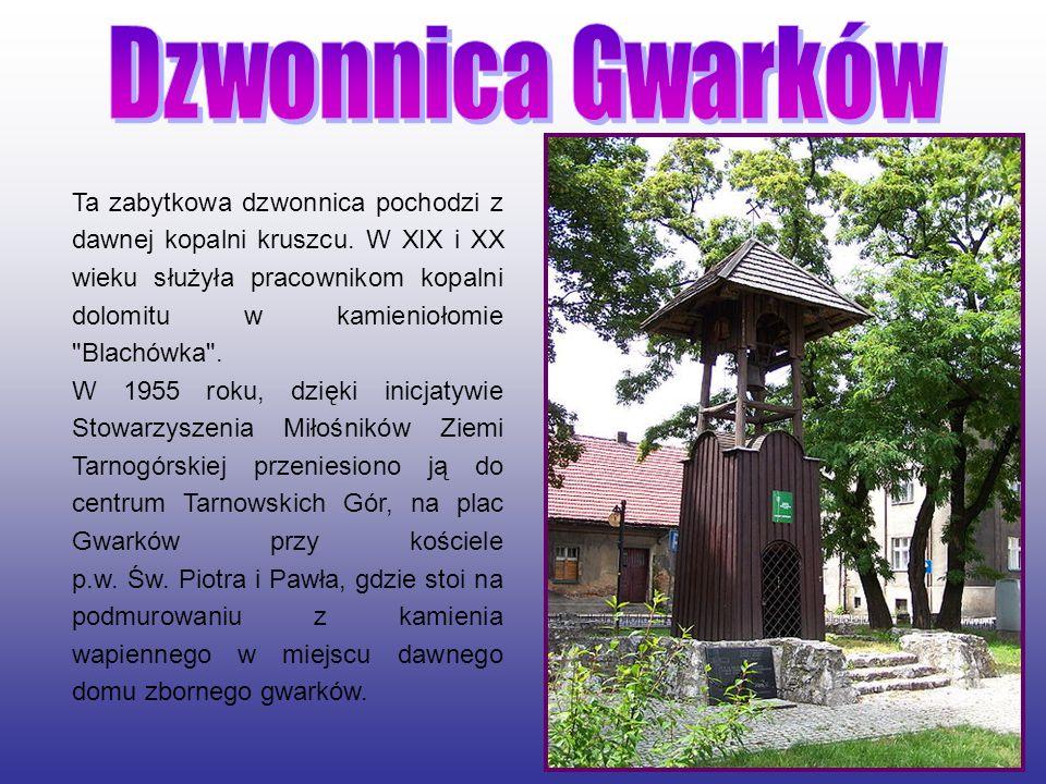 Park Miejski w Tarnowskich Górach – położony na warpiach park w tarnogórskim Śródmieściu.