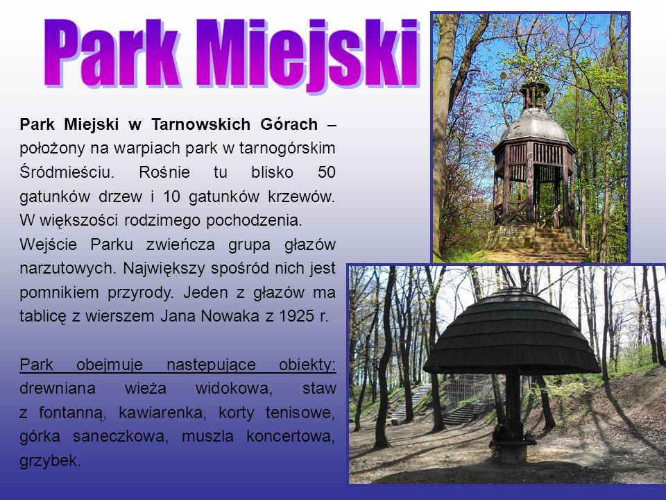 Park Miejski w Tarnowskich Górach – położony na warpiach park w tarnogórskim Śródmieściu. Rośnie tu blisko 50 gatunków drzew i 10 gatunków krzewów. W