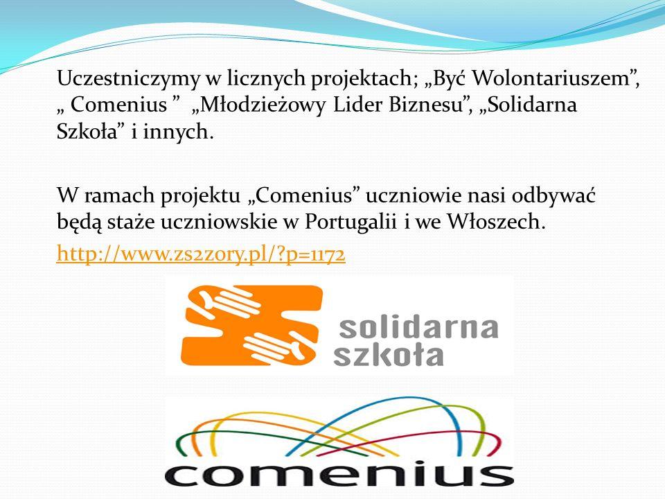Uczestniczymy w licznych projektach; Być Wolontariuszem, Comenius Młodzieżowy Lider Biznesu, Solidarna Szkoła i innych. W ramach projektu Comenius ucz