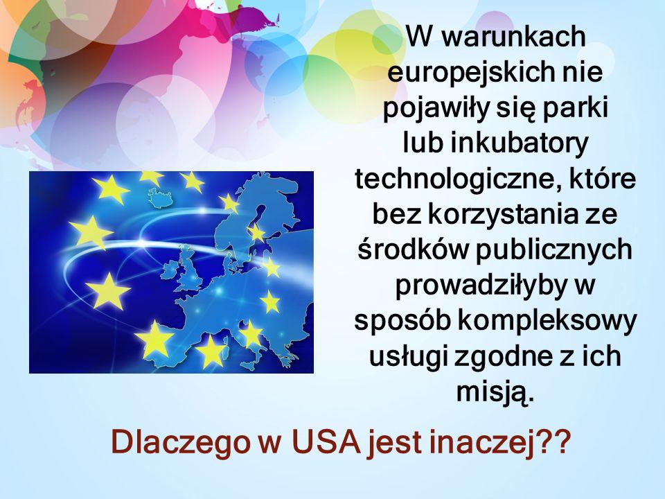 W warunkach europejskich nie pojawiły się parki lub inkubatory technologiczne, które bez korzystania ze środków publicznych prowadziłyby w sposób kompleksowy usługi zgodne z ich misją.