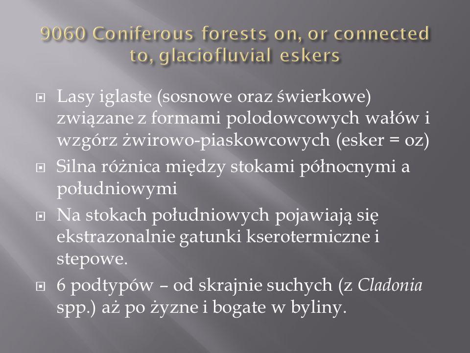 Lasy iglaste (sosnowe oraz świerkowe) związane z formami polodowcowych wałów i wzgórz żwirowo-piaskowcowych (esker = oz) Silna różnica między stokami