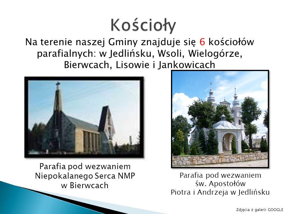 Na terenie naszej Gminy znajduje się 6 kościołów parafialnych: w Jedlińsku, Wsoli, Wielogórze, Bierwcach, Lisowie i Jankowicach Parafia pod wezwaniem