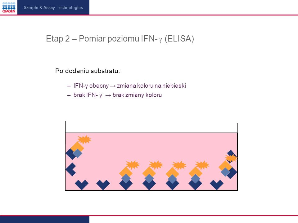 Sample & Assay Technologies Etap 2 – Pomiar poziomu IFN- γ (ELISA) Po dodaniu substratu: –IFN-γ obecny zmiana koloru na niebieski –brak IFN- γ brak zm