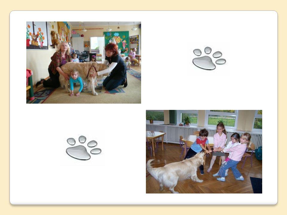 W przedszkolu wykorzystywanych jest wiele metod pracy z dziećmi.