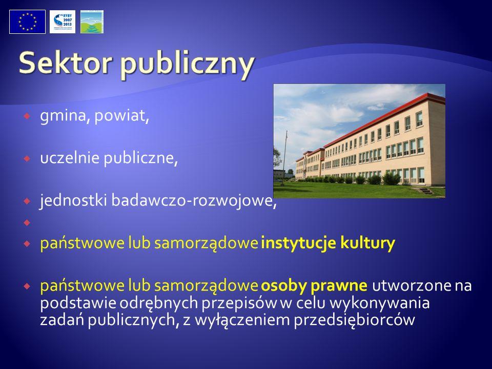 gmina, powiat, uczelnie publiczne, jednostki badawczo-rozwojowe, państwowe lub samorządowe instytucje kultury państwowe lub samorządowe osoby prawne u