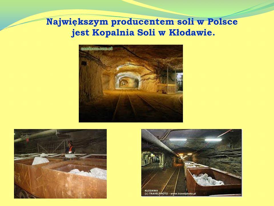 Wydobycie soli Największe złoża soli występują w Rosji, Francji, USA, Niemczech i Chinach. W Polsce najpopularniejszymi kopalniami są: Kłodawa, Wielic