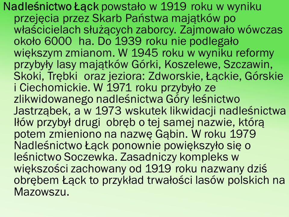 Nadleśnictwo Łąck powstało w 1919 roku w wyniku przejęcia przez Skarb Państwa majątków po właścicielach służących zaborcy. Zajmowało wówczas około 600