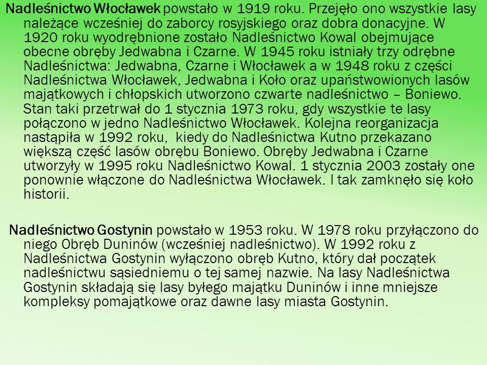 Nadleśnictwo Włocławek powstało w 1919 roku. Przejęło ono wszystkie lasy należące wcześniej do zaborcy rosyjskiego oraz dobra donacyjne. W 1920 roku w