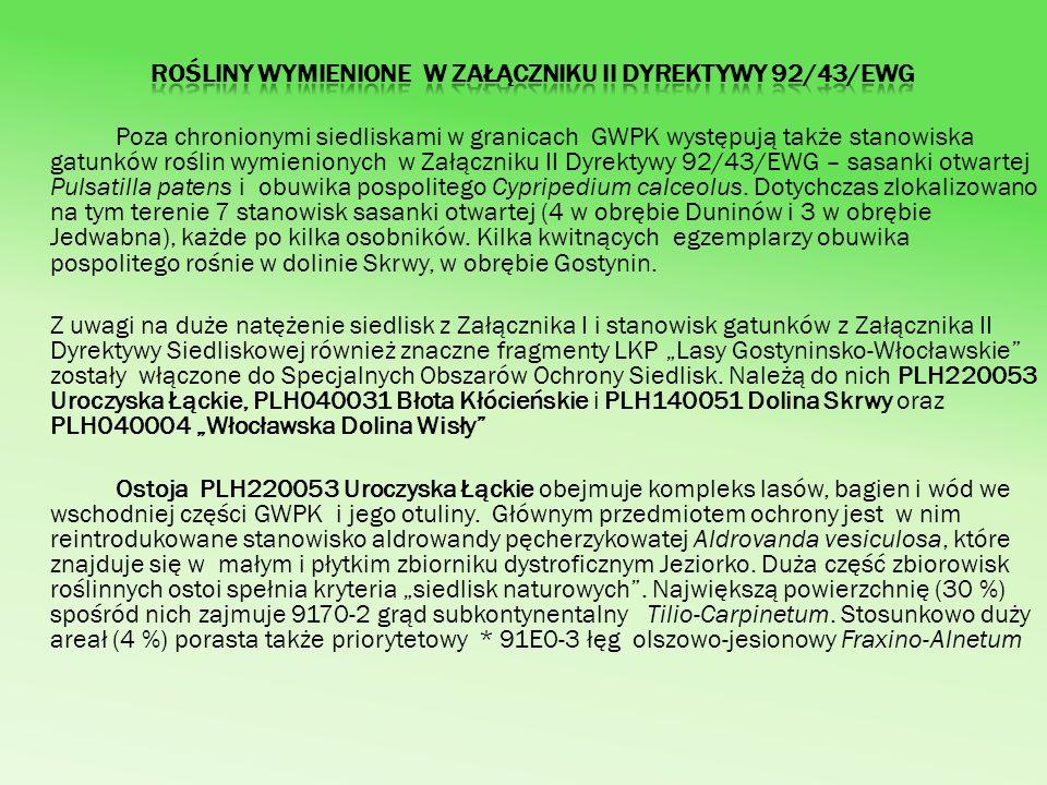 Poza chronionymi siedliskami w granicach GWPK występują także stanowiska gatunków roślin wymienionych w Załączniku II Dyrektywy 92/43/EWG – sasanki ot