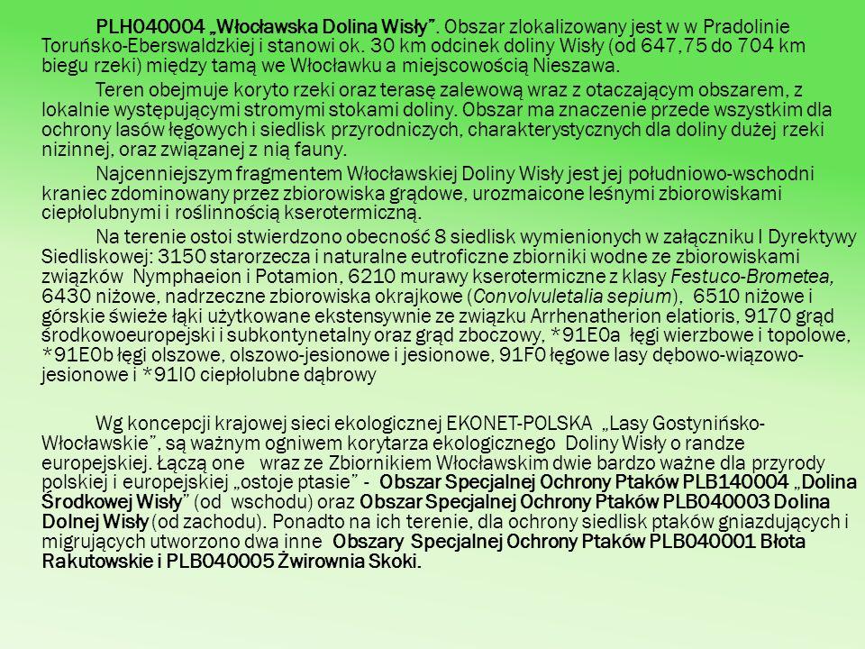 PLH040004 Włocławska Dolina Wisły. Obszar zlokalizowany jest w w Pradolinie Toruńsko-Eberswaldzkiej i stanowi ok. 30 km odcinek doliny Wisły (od 647,7