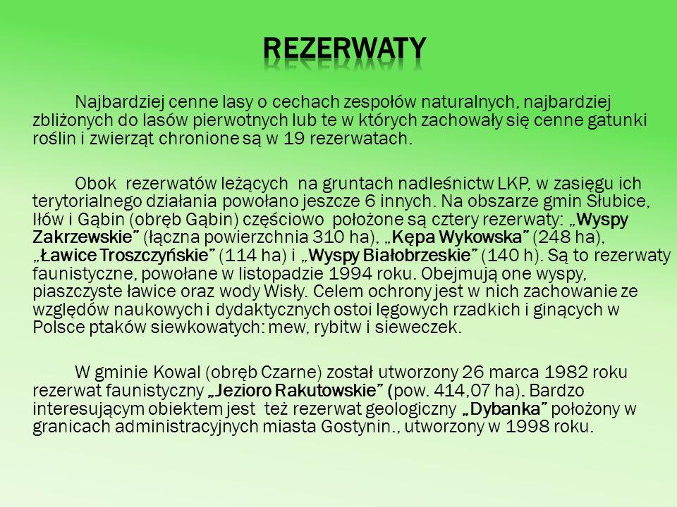 Istotną rolę w zachowaniu najbardziej cennych obszarów i obiektów przyrodniczych w granicach LKP spełnia utworzony w 1979, jako jeden z pierwszych w Polsce Gostynińsko-Włocławski Park Krajobrazowy (GWPK) z siedzibą w Kowalu.