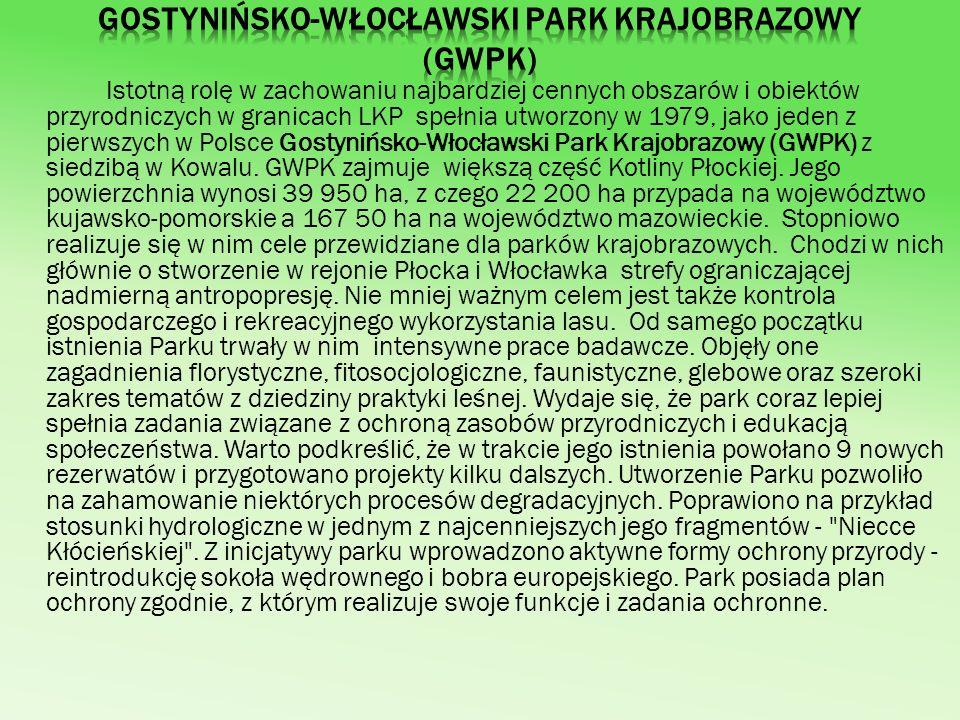 Obszary chronionego krajobrazu Lasy LKP leżą na obszarach chronionego krajobrazu - Doliny Przyszwy, Gostynińsko-Gąbińskiego, Doliny Skrwy Lewej i Nadwiślańskiego.