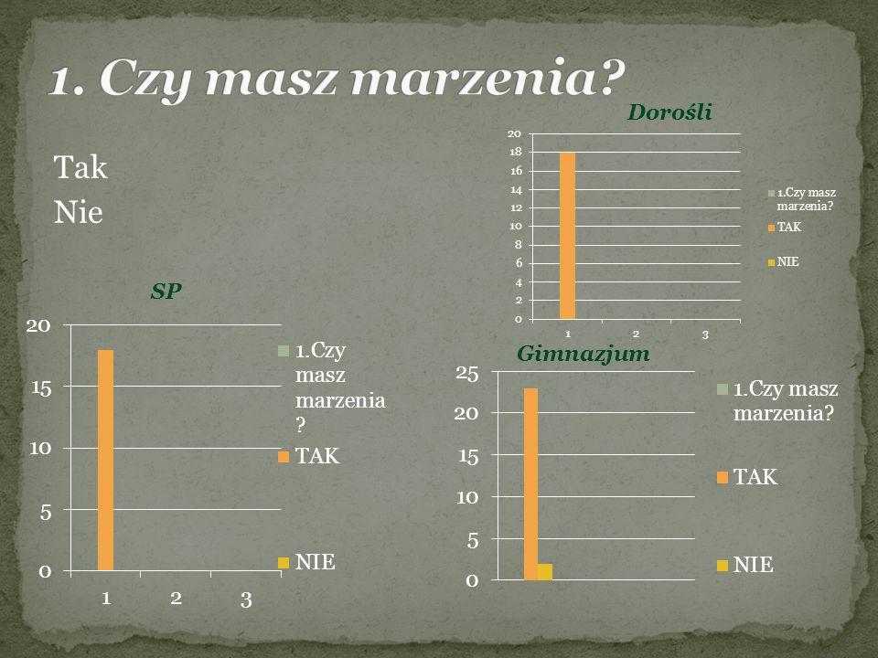 Opiekunowie: p.R. Mleczak, p. P. Wojciechowski Członkowie: Sz.
