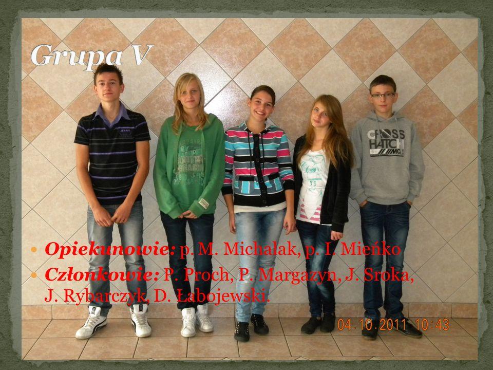 Opiekunowie: p. M. Michalak, p. I. Mieńko Członkowie: P. Proch, P. Margazyn, J. Sroka, J. Rybarczyk, D. Łabojewski.