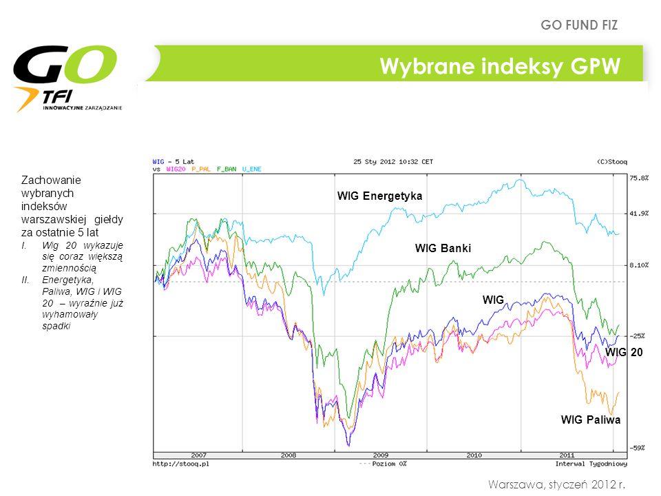 GO FUND FIZ Warszawa, styczeń 2012 r. Wybrane indeksy GPW Zachowanie wybranych indeksów warszawskiej giełdy za ostatnie 5 lat I.Wig 20 wykazuje się co