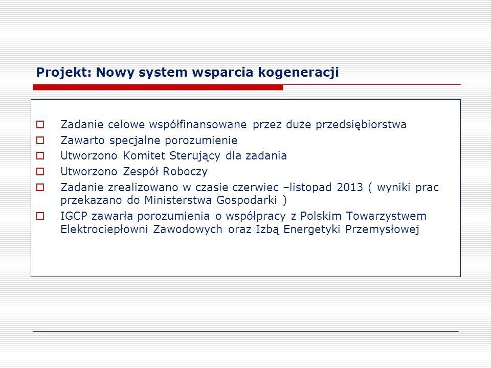 Projekt: Nowy system wsparcia kogeneracji Zadanie celowe współfinansowane przez duże przedsiębiorstwa Zawarto specjalne porozumienie Utworzono Komitet