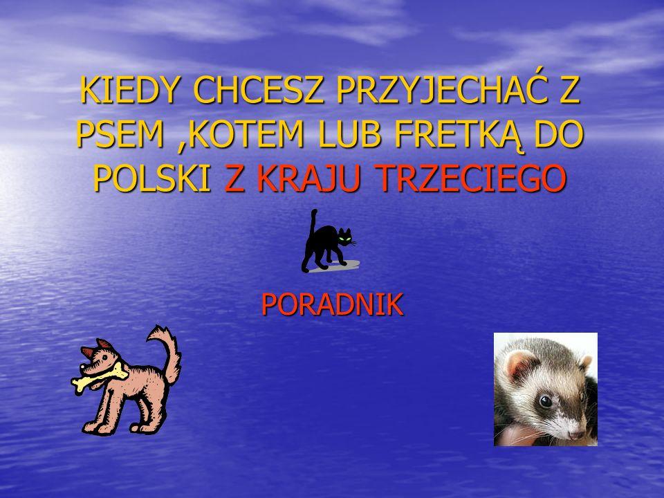 CENNE WSKAZÓWKI 1.