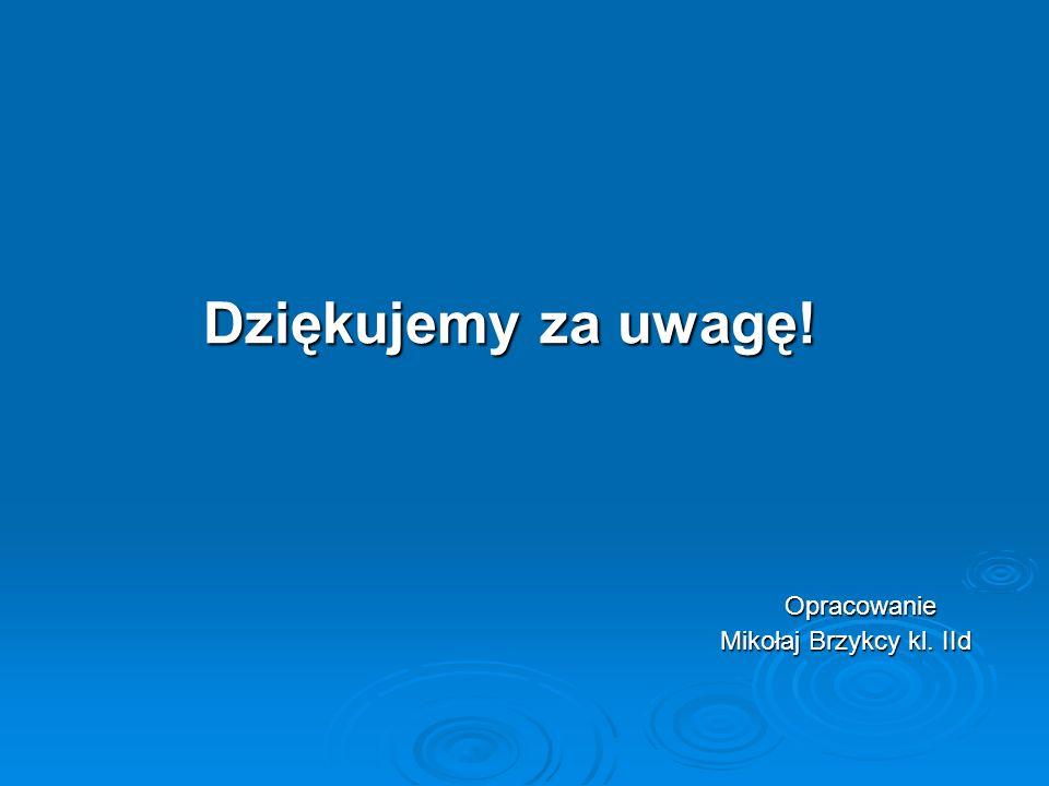 Dziękujemy za uwagę! Opracowanie Opracowanie Mikołaj Brzykcy kl. IId