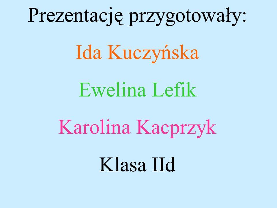 Bibliografia: -Internet: - wikipedia.org/wiki/pitagoras -Interklasa.pl/portal/dokumenty/matico/pitago.html -Szczepn Jeleński Śladami Pitagorasa wyd. P
