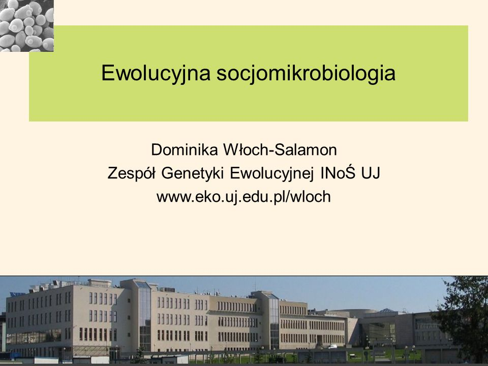 1.Zalety mikroorgnizmów w badaniach zachowań socjalnych 2.Przypomnienie podziału zachowań socjalnych ze względu na zysk (liczony jako liczba kopii genów rozprzestrzenionych z sukcesem) 3.Przykłady zachowań socjalnych mikroorganizmów: 4.Produkcja dóbr publicznych 5.Rzadkie geny zielonej brody – (drożdże – FLO11, śluzowce-csA) 6.Odczuwanie kworum (ang.