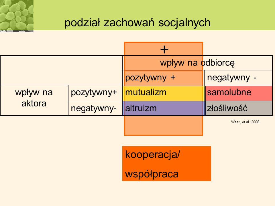kooperacja/ współpraca + podział zachowań socjalnych West, et al. 2006. złośliwośćaltruizmnegatywny- samolubnemutualizmpozytywny+wpływ na aktora negat