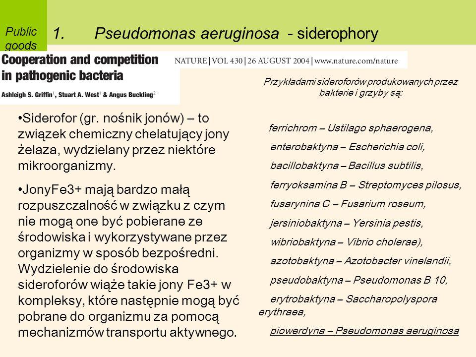 Public goods 1.Pseudomonas aeruginosa - siderophory Siderofor (gr. nośnik jonów) – to związek chemiczny chelatujący jony żelaza, wydzielany przez niek