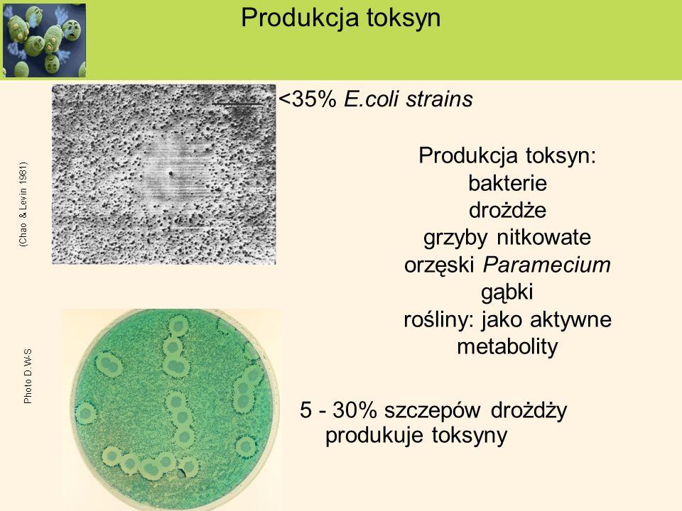 Produkcja toksyn: bakterie drożdże grzyby nitkowate orzęski Paramecium gąbki rośliny: jako aktywne metabolity <35% E.coli strains Produkcja toksyn 5 -
