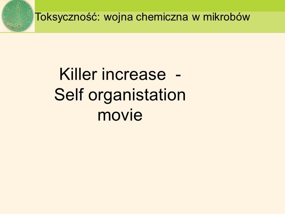 Killer increase - Self organistation movie Toksyczność: wojna chemiczna w mikrobów