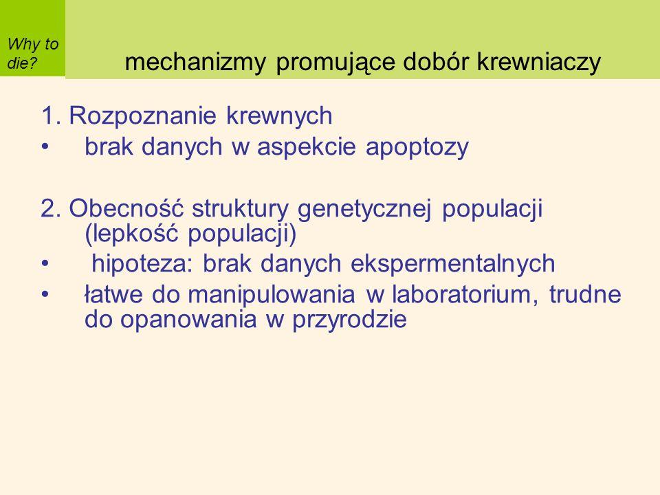 1. Rozpoznanie krewnych brak danych w aspekcie apoptozy 2. Obecność struktury genetycznej populacji (lepkość populacji) hipoteza: brak danych eksperme