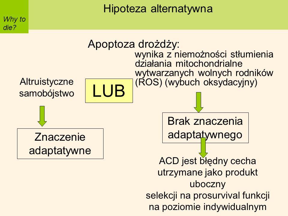 wynika z niemożności stłumienia działania mitochondrialne wytwarzanych wolnych rodników (ROS) (wybuch oksydacyjny) Why to die? Hipoteza alternatywna A