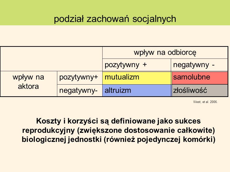 podział zachowań socjalnych West, et al. 2006. złośliwośćaltruizmnegatywny- samolubnemutualizmpozytywny+wpływ na aktora negatywny -pozytywny + wpływ n