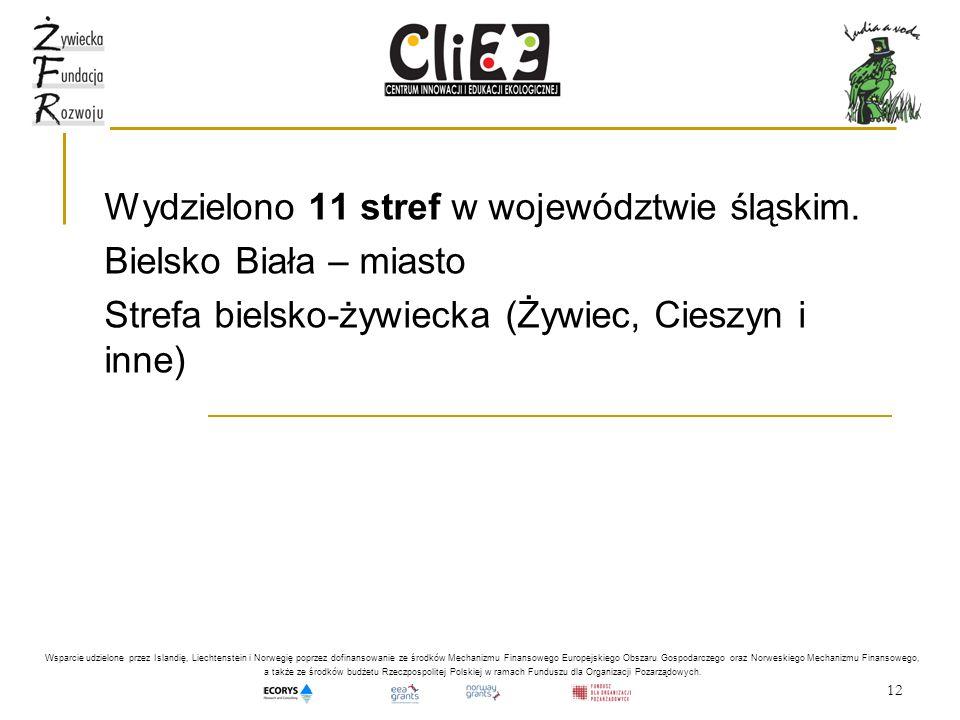 12 Wydzielono 11 stref w województwie śląskim. Bielsko Biała – miasto Strefa bielsko-żywiecka (Żywiec, Cieszyn i inne) Wsparcie udzielone przez Island