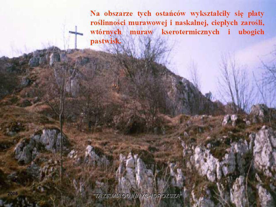 2005 TA ZIEMIA OD INNYCH DROŻSZA 7 W kierunku wschodnim po drugiej stronie drogi Kraków – Olkusz stoi grupa skałek zwanych Duże Skałki, z nieczynnym kamieniołomem wewnątrz, a u ich podnóża widoczny komin nie użytkowanego wapiennika.