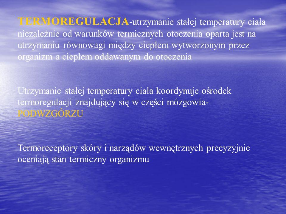 TERMOREGULACJA -utrzymanie stałej temperatury ciała niezależnie od warunków termicznych otoczenia oparta jest na utrzymaniu równowagi między ciepłem w