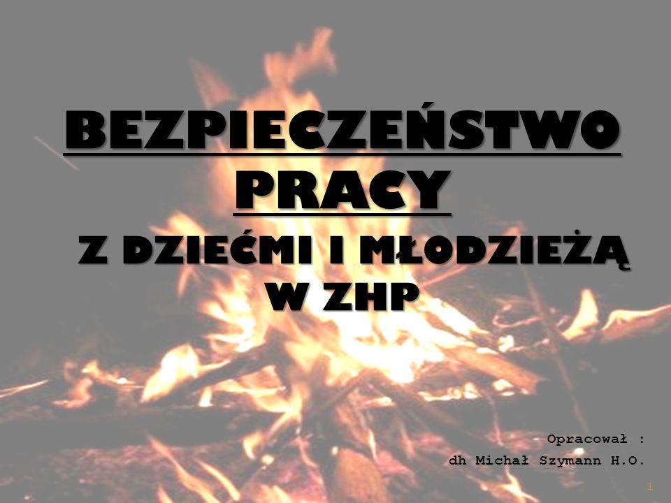 BEZPIECZEŃSTWO PRACY Z DZIEĆMI I MŁODZIEŻĄ W ZHP Opracował : dh Michał Szymann H.O. 1