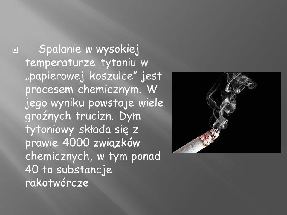 Spalanie w wysokiej temperaturze tytoniu w papierowej koszulce jest procesem chemicznym.