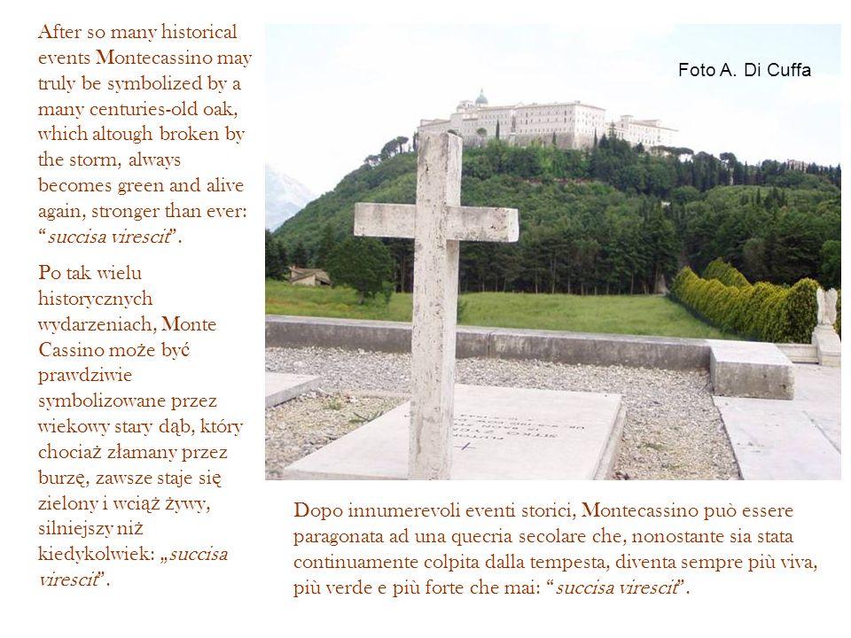 Foto A. Di Cuffa Dopo innumerevoli eventi storici, Montecassino può essere paragonata ad una quecria secolare che, nonostante sia stata continuamente