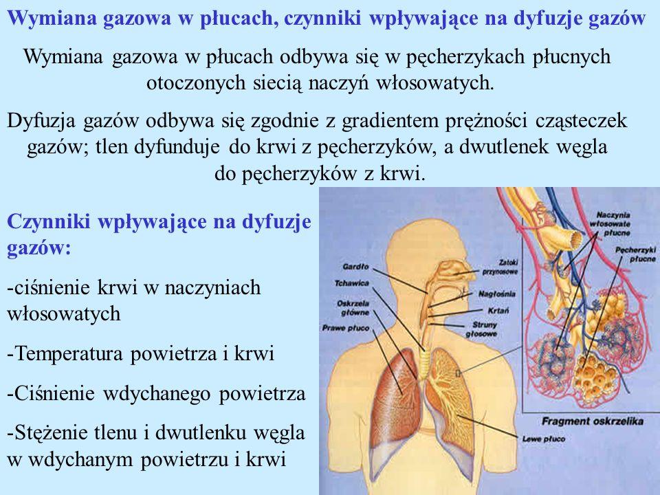 Wymiana gazowa w płucach, czynniki wpływające na dyfuzje gazów Wymiana gazowa w płucach odbywa się w pęcherzykach płucnych otoczonych siecią naczyń wł